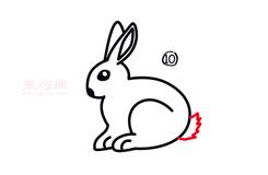 幼儿简笔画大白兔的画法 教你如何画大白兔简笔画