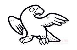 幼儿简笔画猎鹰的画法 教你如何画猎鹰简笔画