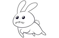 儿童简笔画小兔子的画法 教你如何画小兔子简笔画