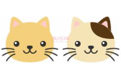 小猫头像的画法步骤 教你怎么画小猫头像简笔画