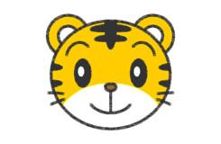 卡通老虎头的画法步骤 教你怎么画小老虎头简笔画