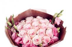 玫瑰花语大全之粉佳人玫瑰花语详解