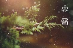 24节气小雪由来 二十四节气小雪节气介绍