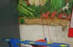 用易拉罐和旧纸箱手工制作超简单的螺旋桨飞机模型方法