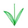 对称叶子画法