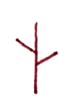画3根线组成树干