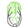 白菜的画法