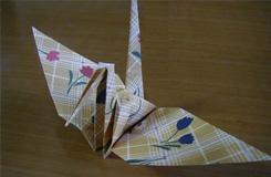 一起来学折千纸鹤 千纸鹤的折法图解
